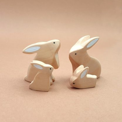 Famille Lapin Nature